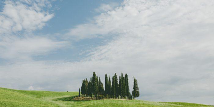 Amelia & Jason | Wedding in Pienza - Tuscany